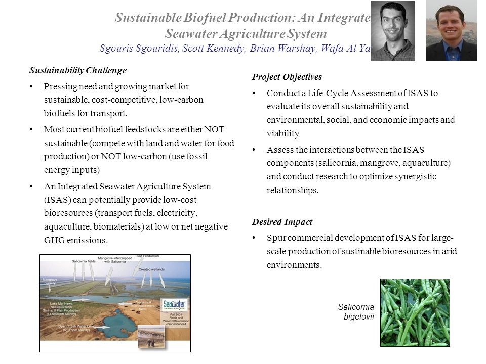 Sustainable Biofuel Production: An Integrated Seawater Agriculture System Sgouris Sgouridis, Scott Kennedy, Brian Warshay, Wafa Al Yamani Sustainability Challenge Pressing need and growing market for sustainable, cost-competitive, low-carbon biofuels for transport.