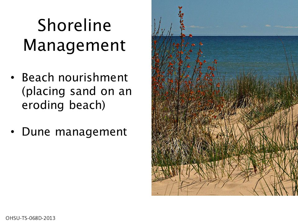 Shoreline Management Beach nourishment (placing sand on an eroding beach) Dune management OHSU-TS-068D-2013