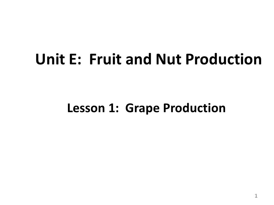 Review/Summary How long have grapes been domesticated and where did they originate.