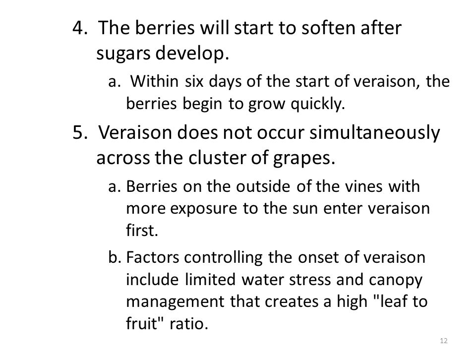 4. The berries will start to soften after sugars develop.