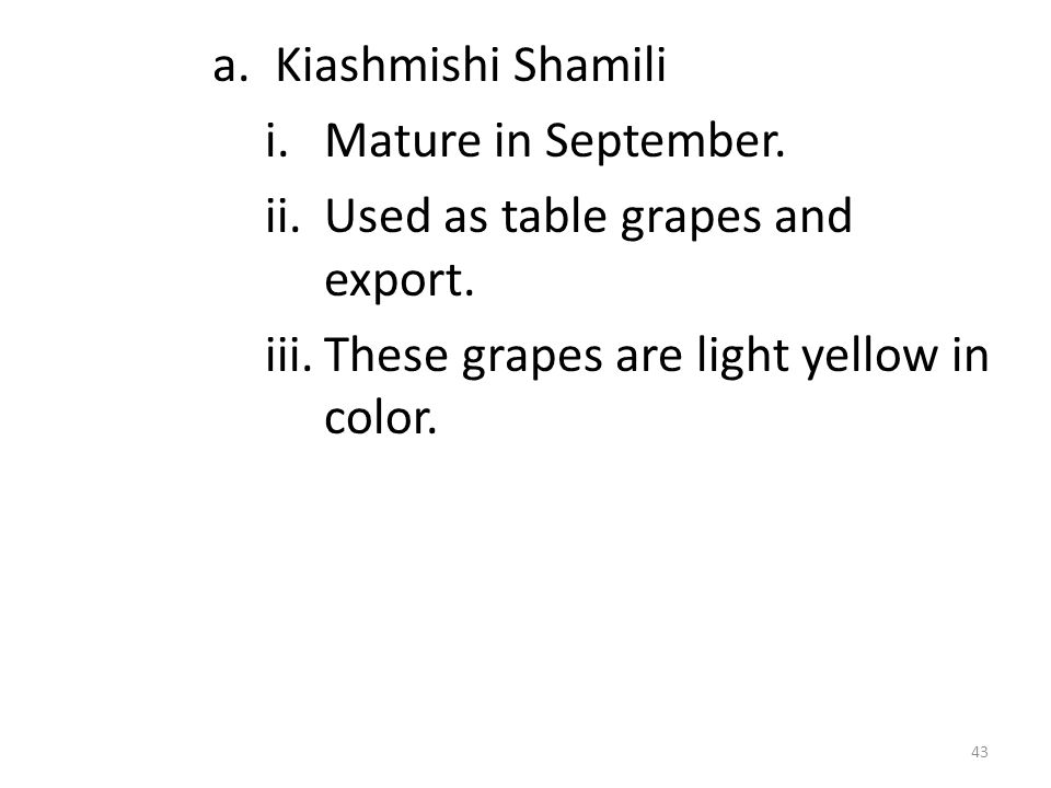 a. Kiashmishi Shamili i.Mature in September. ii.Used as table grapes and export. iii.These grapes are light yellow in color. 43