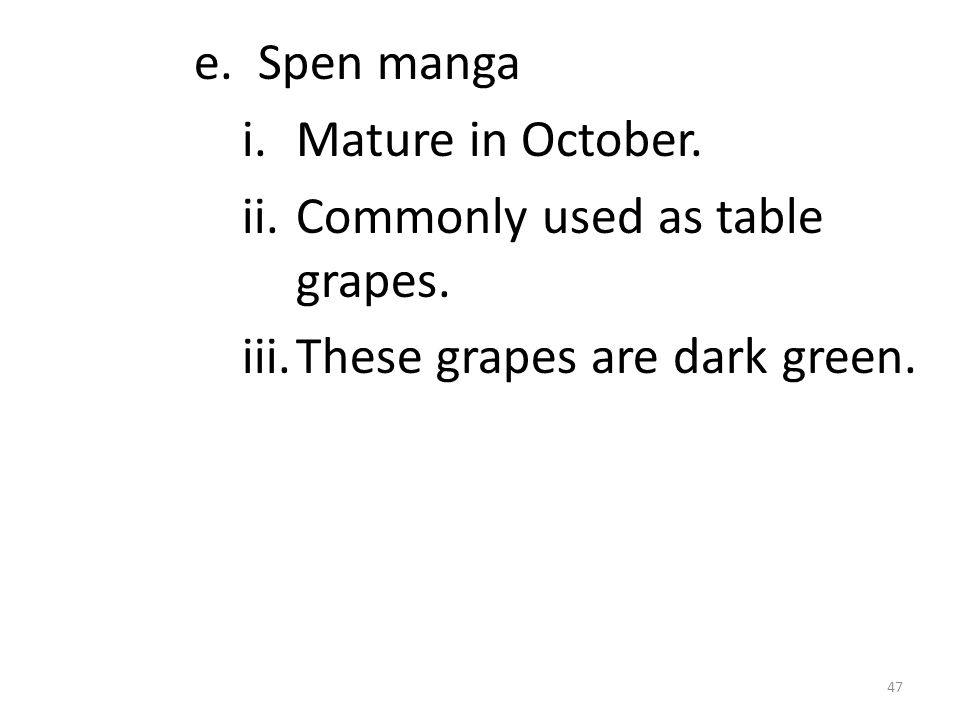 e. Spen manga i.Mature in October. ii.Commonly used as table grapes.