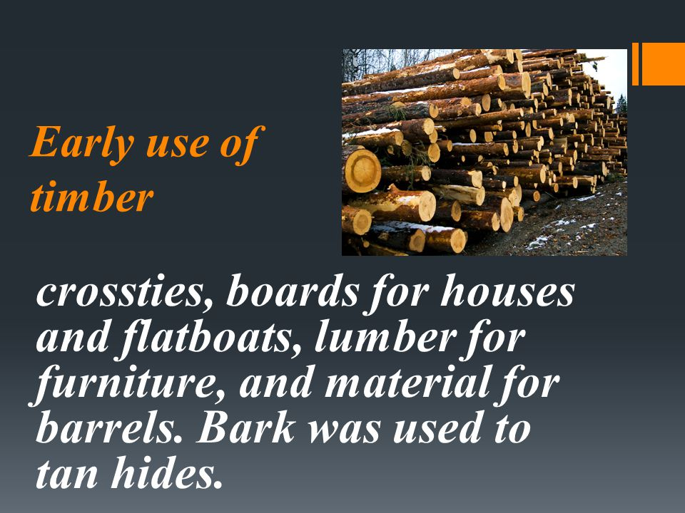 Early use of timber crossties, boards for houses and flatboats, lumber for furniture, and material for barrels. Bark was used to tan hides.