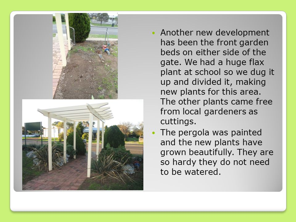 Another new development has been the front garden beds on either side of the gate.