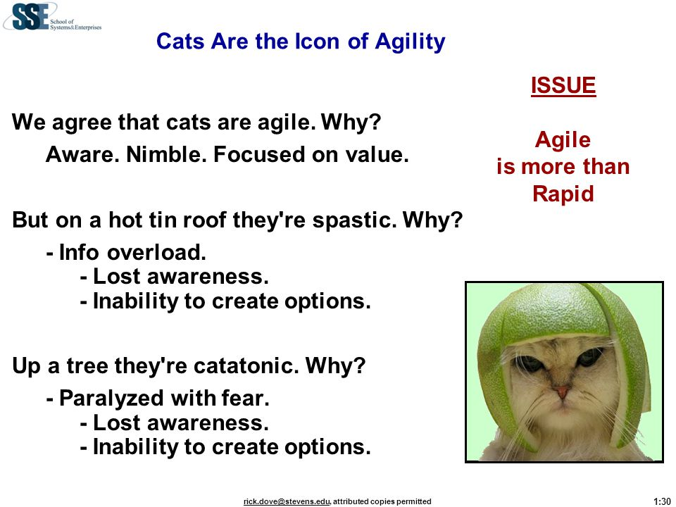 1:30 rick.dove@stevens.edurick.dove@stevens.edu, attributed copies permitted ISSUE Agile is more than Rapid Cats Are the Icon of Agility We agree that