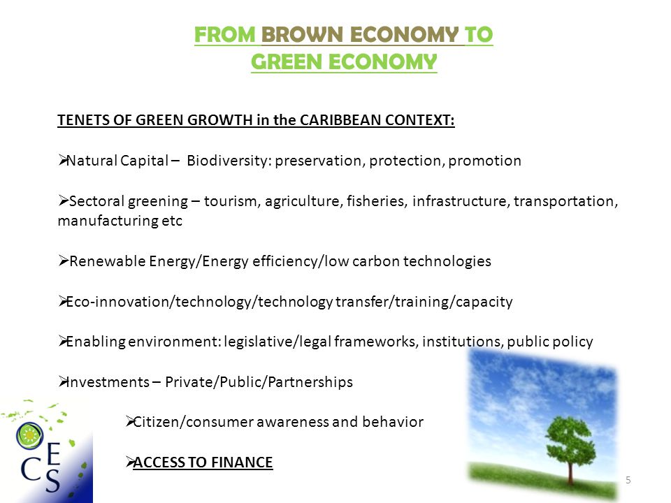 5 FROM BROWN ECONOMY TO GREEN ECONOMY TENETS OF GREEN GROWTH in the CARIBBEAN CONTEXT:  Natural Capital – Biodiversity: preservation, protection, promotion  Sectoral greening – tourism, agriculture, fisheries, infrastructure, transportation, manufacturing etc  Renewable Energy/Energy efficiency/low carbon technologies  Eco-innovation/technology/technology transfer/training/capacity  Enabling environment: legislative/legal frameworks, institutions, public policy  Investments – Private/Public/Partnerships  Citizen/consumer awareness and behavior  ACCESS TO FINANCE