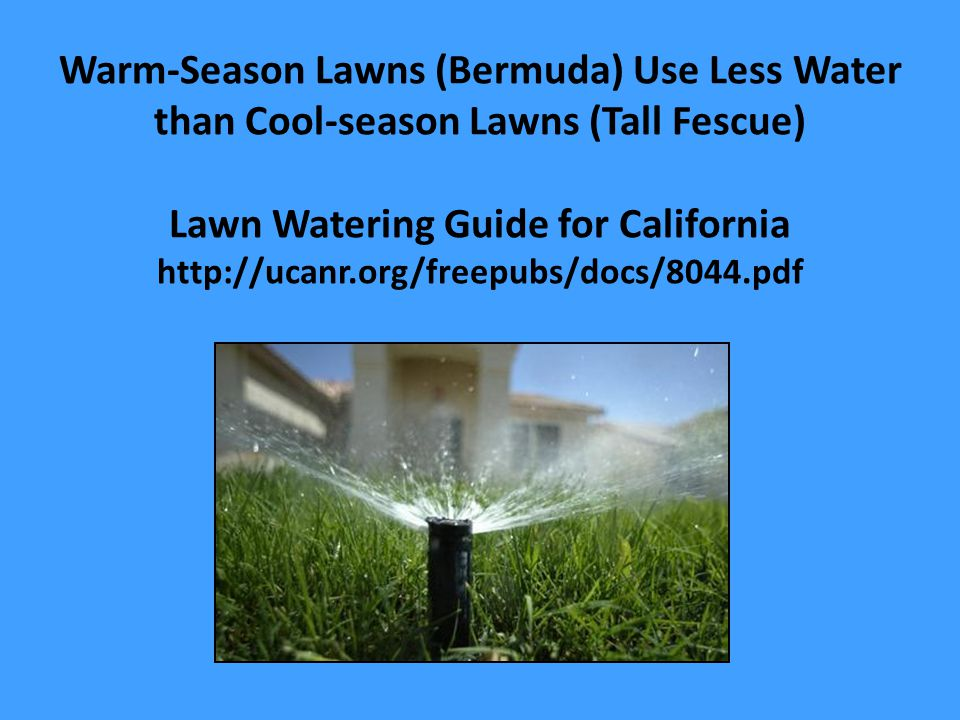 Warm-Season Lawns (Bermuda) Use Less Water than Cool-season Lawns (Tall Fescue) Lawn Watering Guide for California http://ucanr.org/freepubs/docs/8044.pdf