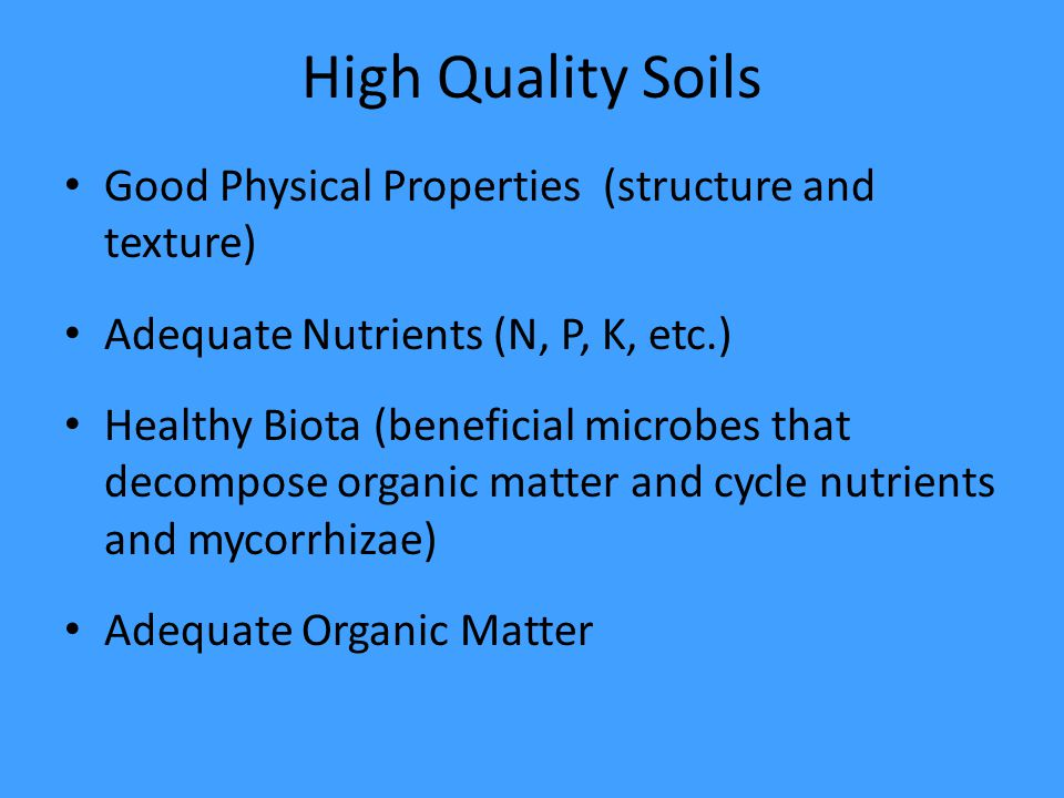 High Quality Soils Good Physical Properties (structure and texture) Adequate Nutrients (N, P, K, etc.) Healthy Biota (beneficial microbes that decompose organic matter and cycle nutrients and mycorrhizae) Adequate Organic Matter