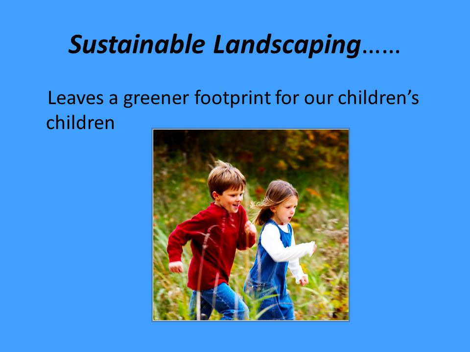 Sustainable Landscapes Incorporate plants suitable for climate/location Conserve water Nurture and protect soil Prevent/reduce pest problems Conserve energy/Reduce pollution Encourage wildlife
