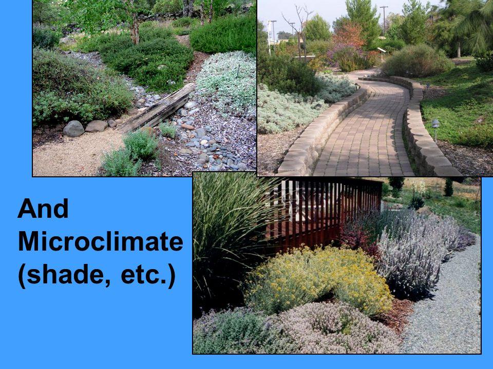 Soil Textures