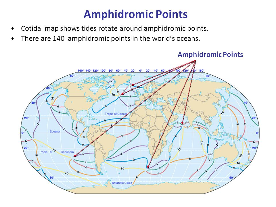 Amphidromic Points Cotidal map shows tides rotate around amphidromic points. There are 140 amphidromic points in the world's oceans. Figure 9-14 Amphi