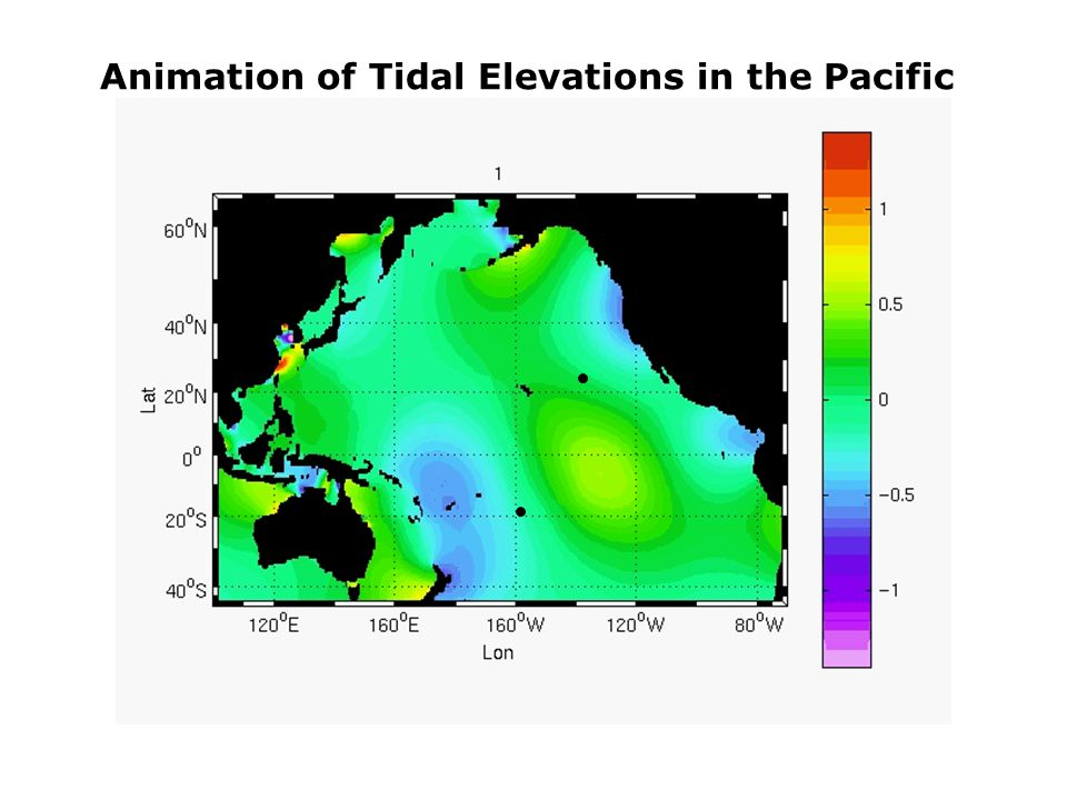 Animation of Tidal Elevations in the Pacific