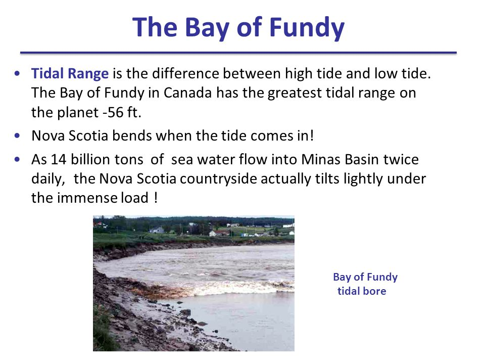 The Bay of Fundy Tidal Range is the difference between high tide and low tide. The Bay of Fundy in Canada has the greatest tidal range on the planet -