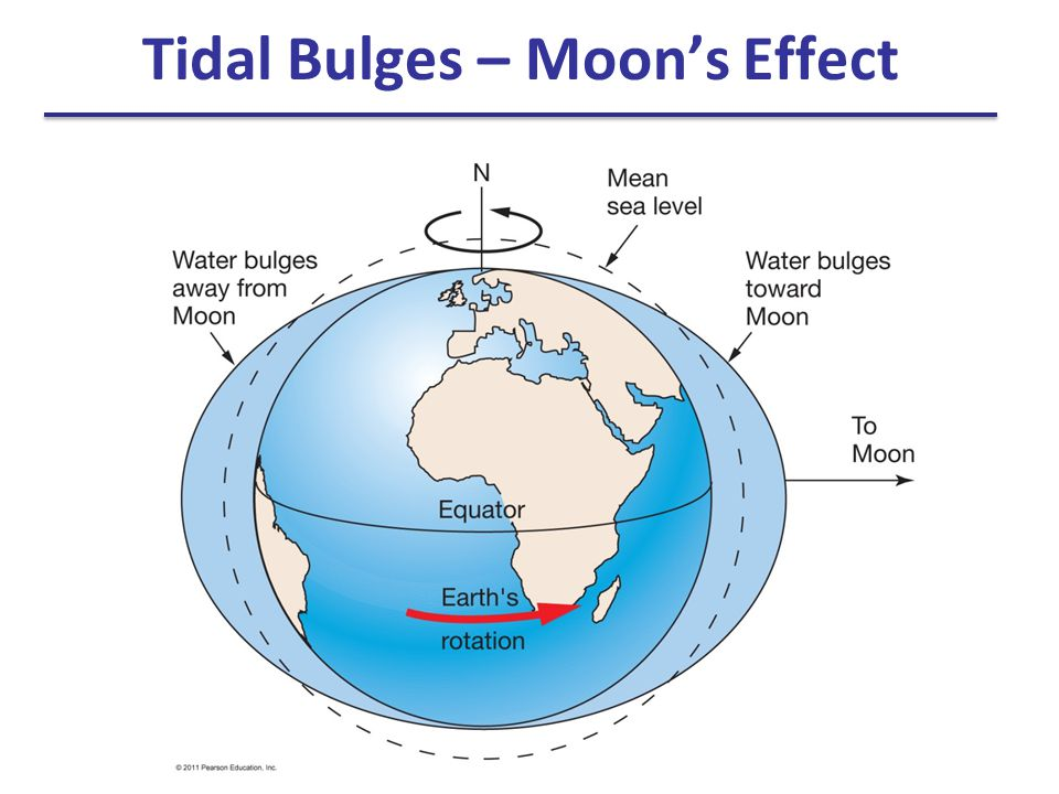 Actual tides are more complex Continents and friction with seafloor modify tidal bulges Tides are shallow-water waves with speed determined by depth of water Idealized tidal bulges cannot form because they cannot keep up with Earth's rotation