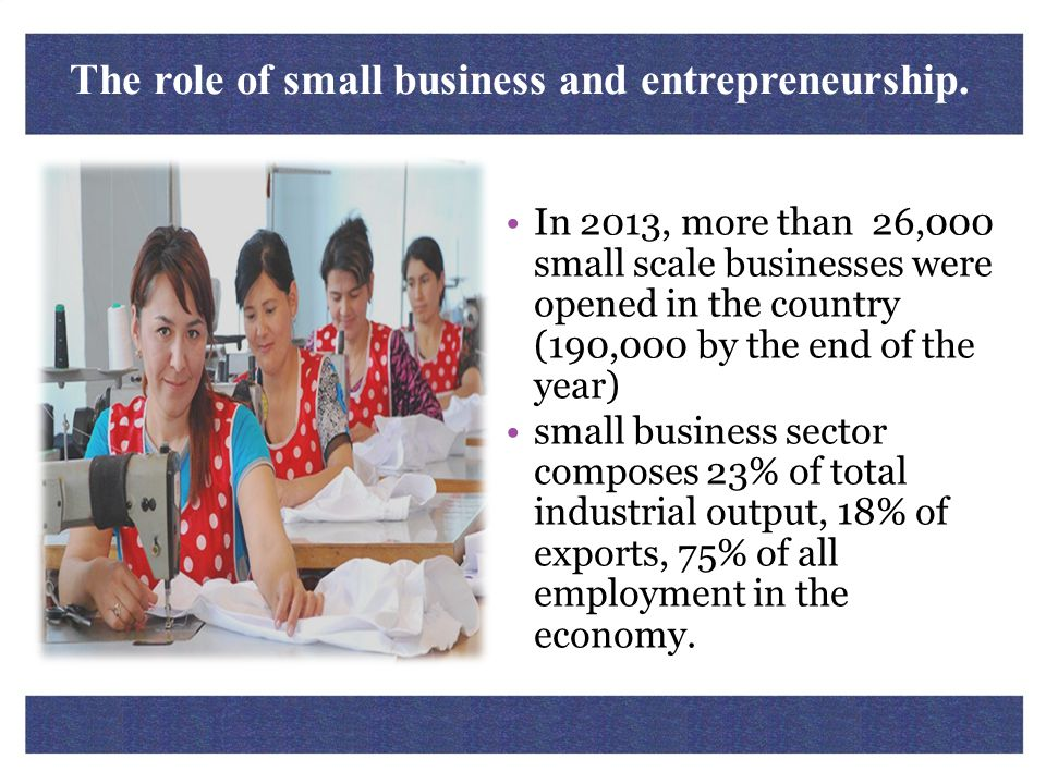 The role of small business and entrepreneurship. In 2013, more than 26,000 small scale businesses were opened in the country (190,000 by the end of th