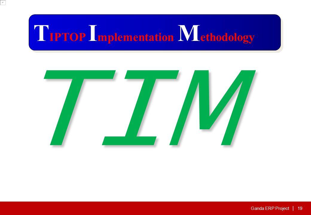Ganda ERP Project | T IPTOP I mplementation M ethodology TIM 19