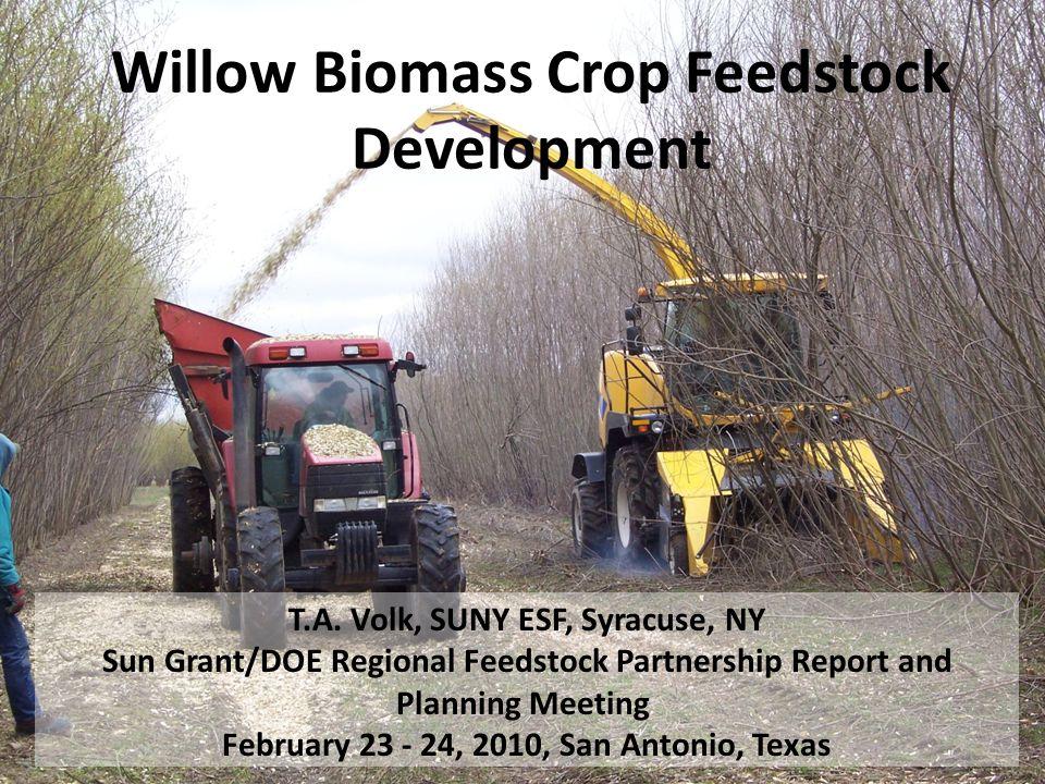 Willow Biomass Crop Feedstock Development T.A.