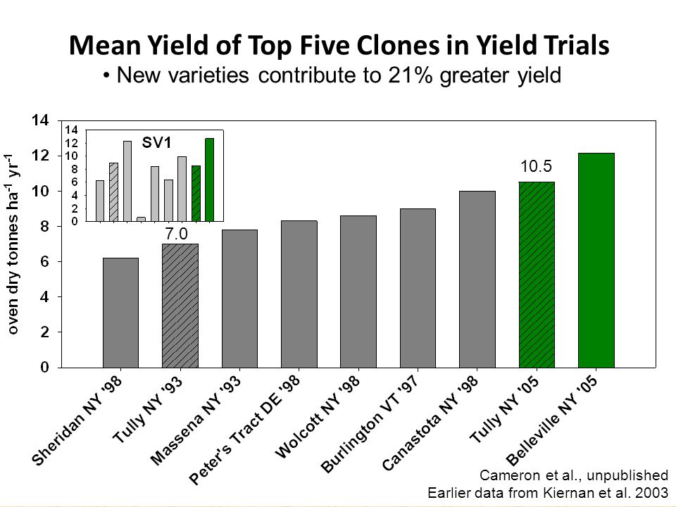 Mean Yield of Top Five Clones in Yield Trials New varieties contribute to 21% greater yield Cameron et al., unpublished Earlier data from Kiernan et al.