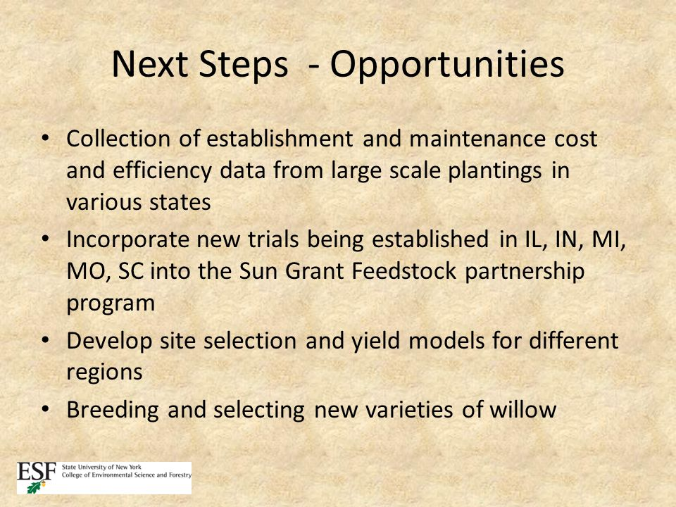 Next Steps - Opportunities Collection of establishment and maintenance cost and efficiency data from large scale plantings in various states Incorporate new trials being established in IL, IN, MI, MO, SC into the Sun Grant Feedstock partnership program Develop site selection and yield models for different regions Breeding and selecting new varieties of willow