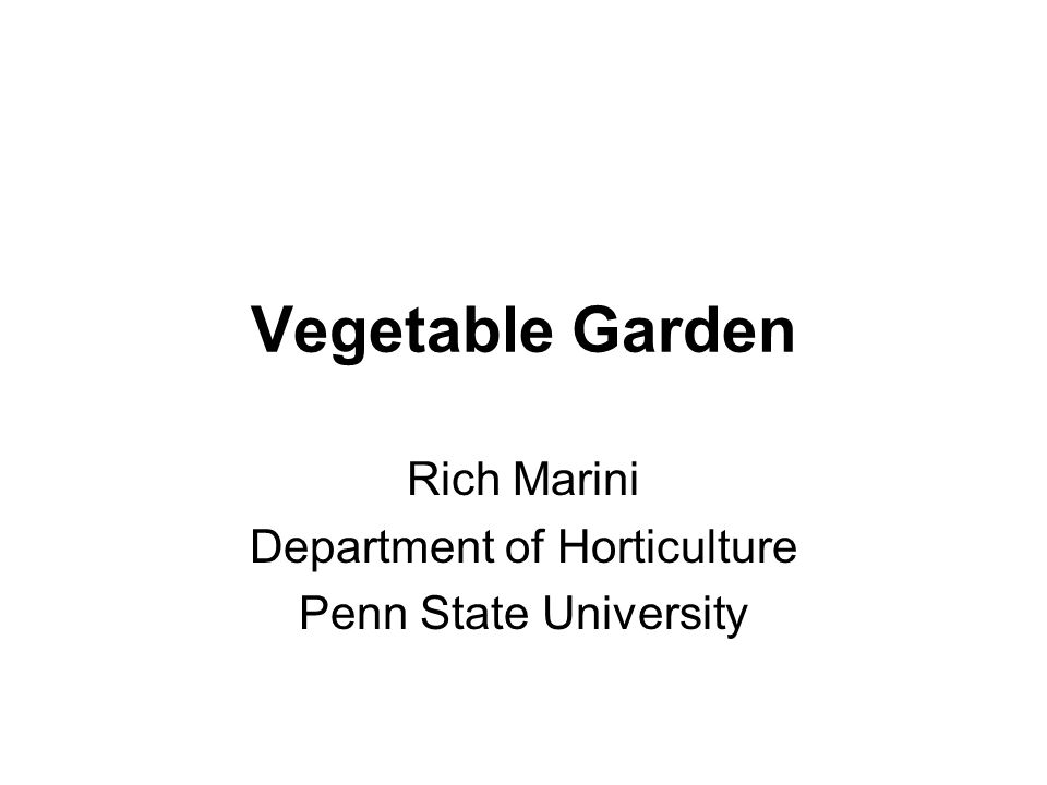 Vegetable Garden Rich Marini Department of Horticulture Penn State University