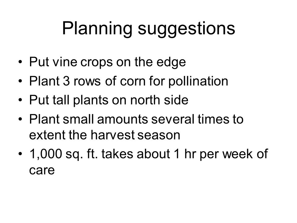 Planning suggestions Put vine crops on the edge Plant 3 rows of corn for pollination Put tall plants on north side Plant small amounts several times t