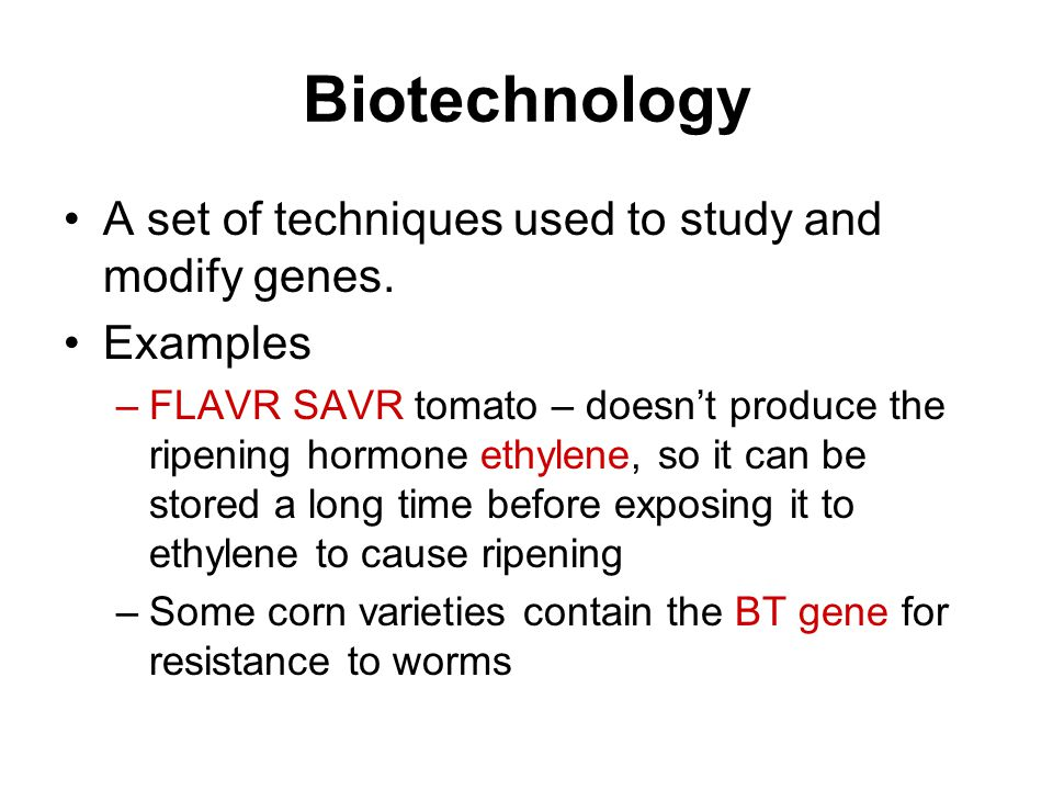 Biotechnology A set of techniques used to study and modify genes. Examples –FLAVR SAVR tomato – doesn't produce the ripening hormone ethylene, so it c