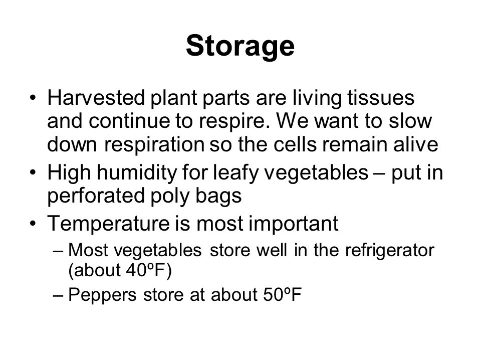 Storage Harvested plant parts are living tissues and continue to respire. We want to slow down respiration so the cells remain alive High humidity for