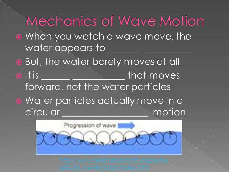  When you watch a wave move, the water appears to _______ __________  But, the water barely moves at all  It is ______ ___________ that moves forwa