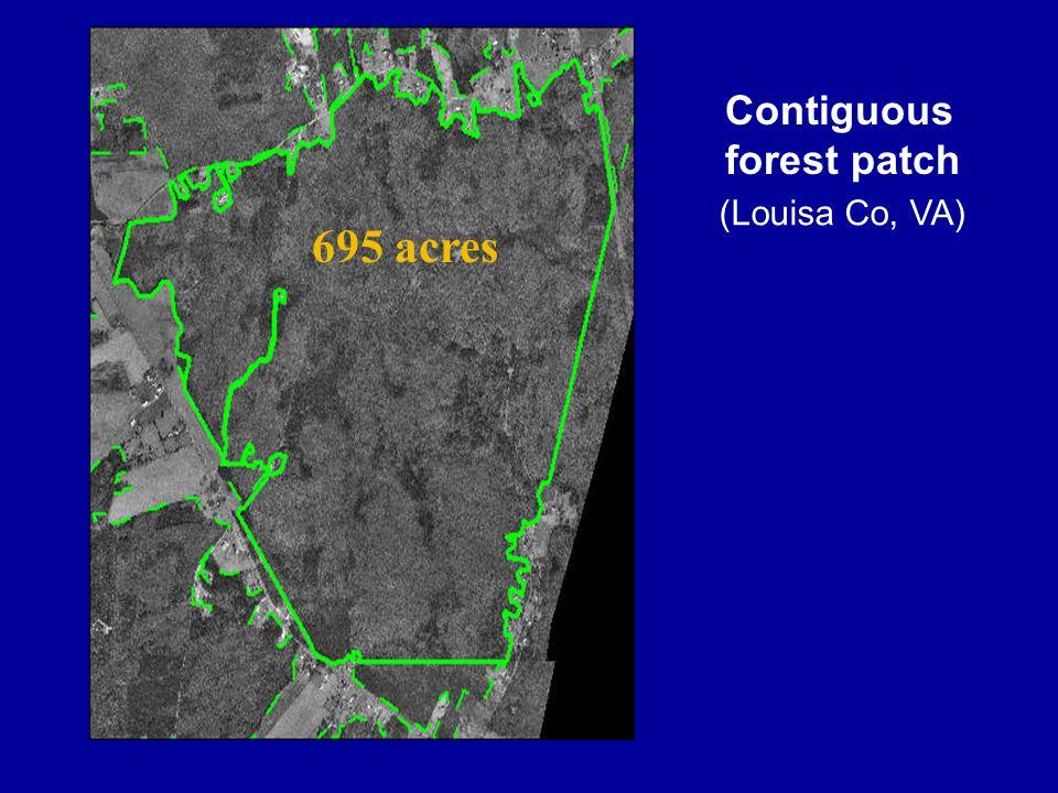 695 acres Contiguous forest patch (Louisa Co, VA)