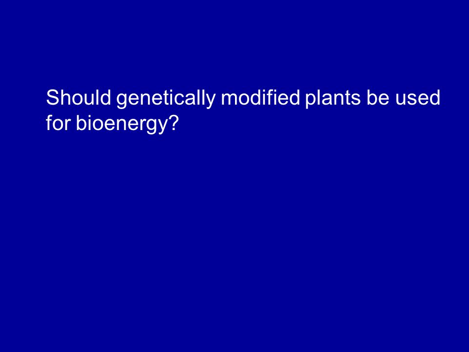 Should genetically modified plants be used for bioenergy