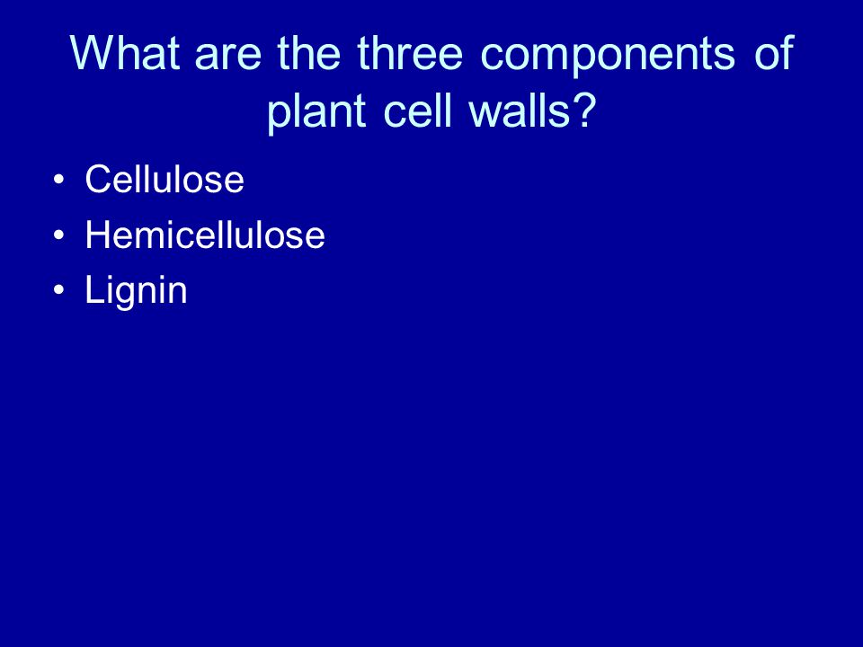 What are the three components of plant cell walls Cellulose Hemicellulose Lignin