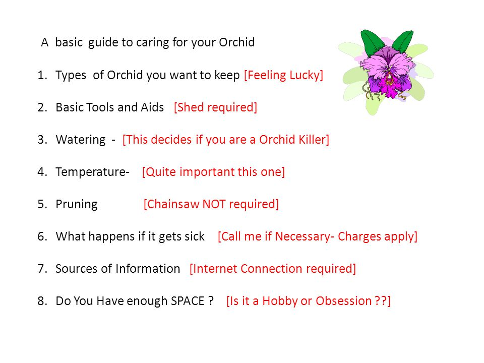 A basic guide to caring for your Orchid 1.Types of Orchid you want to keep [Feeling Lucky] 2.Basic Tools and Aids [Shed required] 3.Watering - [This decides if you are a Orchid Killer] 4.Temperature- [Quite important this one] 5.Pruning [Chainsaw NOT required] 6.What happens if it gets sick [Call me if Necessary- Charges apply] 7.Sources of Information [Internet Connection required] 8.Do You Have enough SPACE .