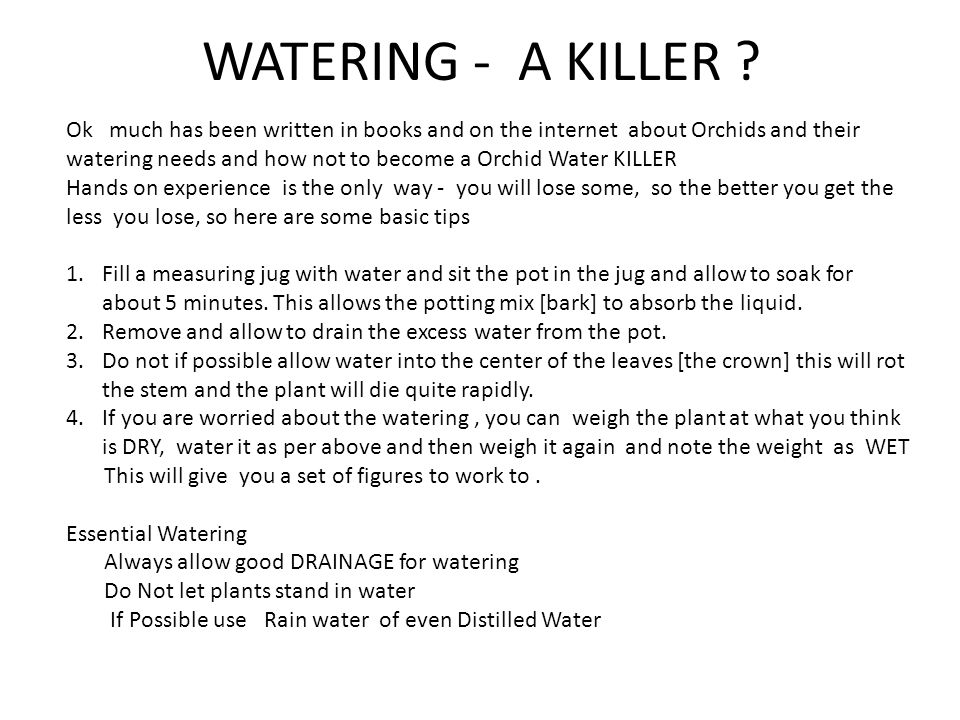 WATERING - A KILLER .