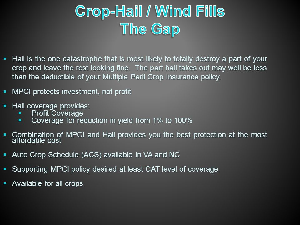  Hail is the one catastrophe that is most likely to totally destroy a part of your crop and leave the rest looking fine.