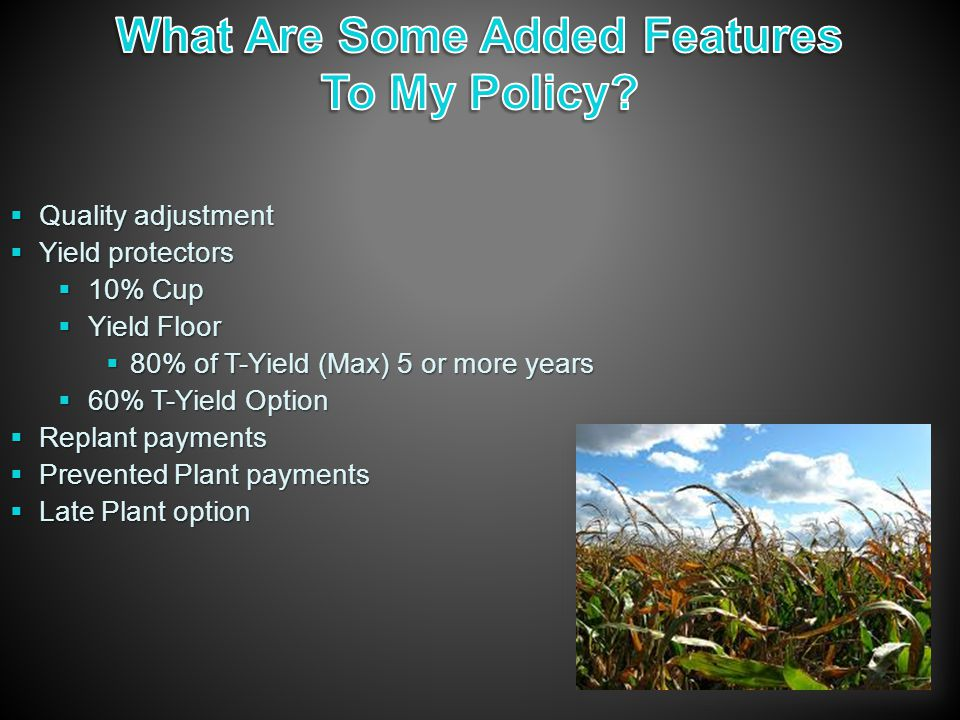  Quality adjustment  Yield protectors  10% Cup  Yield Floor  80% of T-Yield (Max) 5 or more years  60% T-Yield Option  Replant payments  Prevented Plant payments  Late Plant option