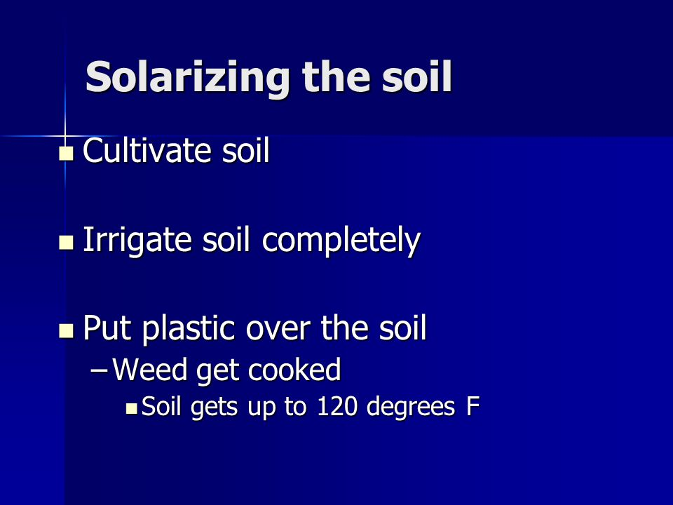 Solarizing the soil Cultivate soil Cultivate soil Irrigate soil completely Irrigate soil completely Put plastic over the soil Put plastic over the soil –Weed get cooked Soil gets up to 120 degrees F Soil gets up to 120 degrees F