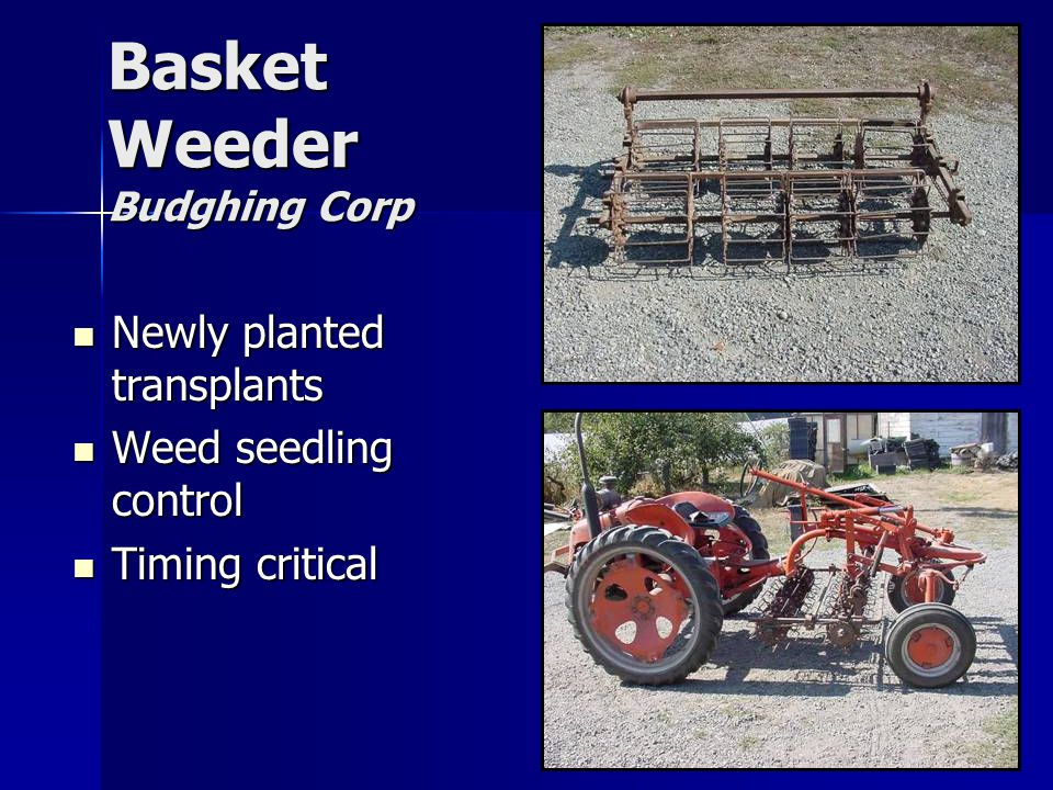 Basket Weeder Budghing Corp Newly planted transplants Newly planted transplants Weed seedling control Weed seedling control Timing critical Timing critical