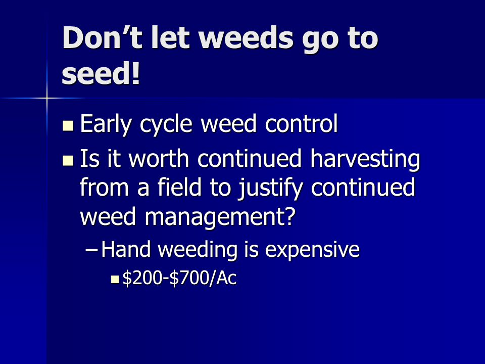 Don't let weeds go to seed.