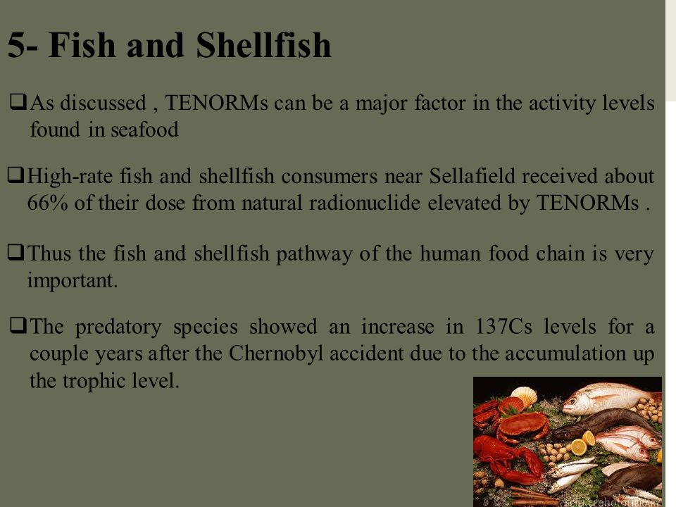5- Fish and Shellfish  As discussed, TENORMs can be a major factor in the activity levels found in seafood  High-rate fish and shellfish consumers n