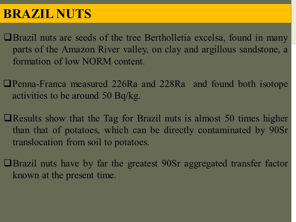 BRAZIL NUTS  Brazil nuts are seeds of the tree Bertholletia excelsa, found in many parts of the Amazon River valley, on clay and argillous sandstone,