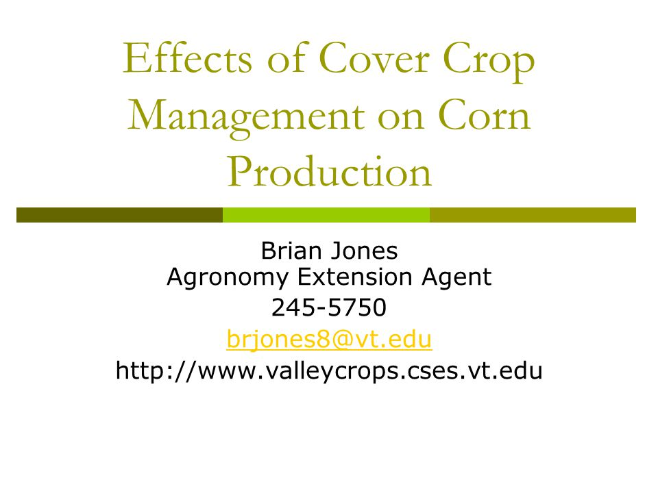 Benefits of Cover Crops - Review  Cut fertilizer costs Fix atmospheric N (legumes) Scavenge / redistribute nutrients (grasses, some legumes) How much?.