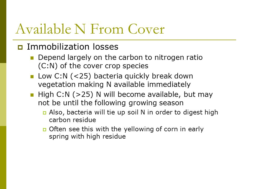 Available N From Cover  Immobilization losses Depend largely on the carbon to nitrogen ratio (C:N) of the cover crop species Low C:N (<25) bacteria q