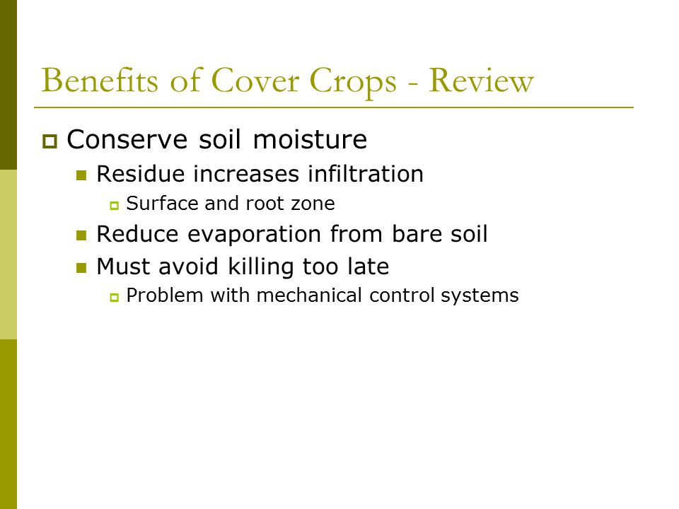 Challenges of Cover Crops  Main Challenge: Fitting them into your system Have to have the feed…  Nutrient cycling How much N.