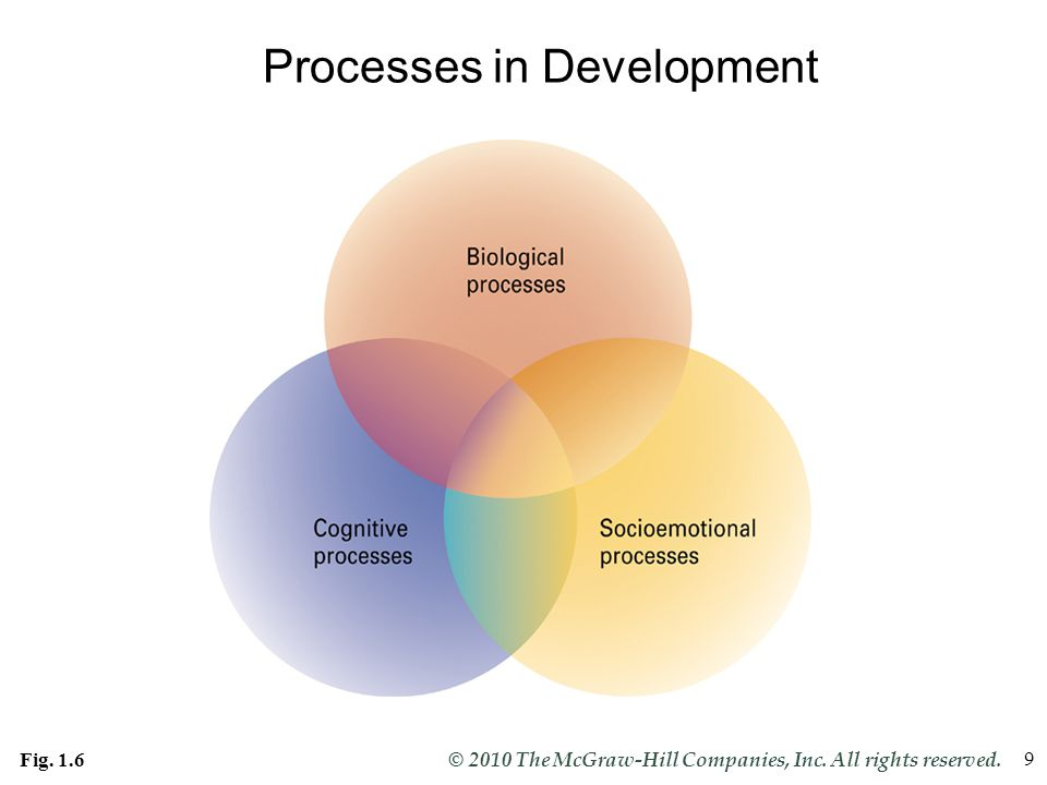 Slide 9 © 2010 The McGraw-Hill Companies, Inc. All rights reserved. 9 Processes in Development Fig. 1.6