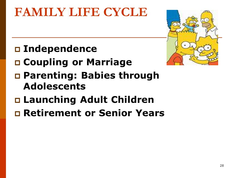 28 FAMILY LIFE CYCLE  Independence  Coupling or Marriage  Parenting: Babies through Adolescents  Launching Adult Children  Retirement or Senior Years