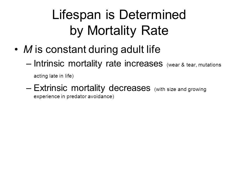 Lifespan is Determined by Mortality Rate M is constant during adult life –Intrinsic mortality rate increases (wear & tear, mutations acting late in life) –Extrinsic mortality decreases (with size and growing experience in predator avoidance)