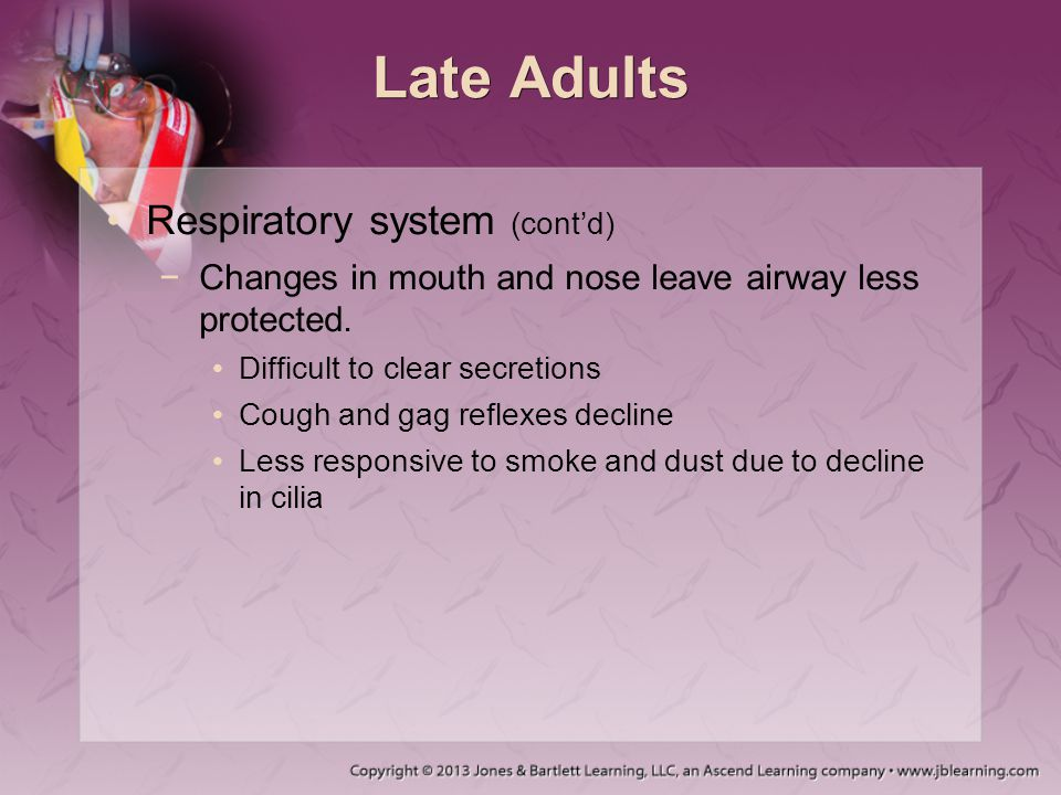 Late Adults Respiratory system (cont'd) −Changes in mouth and nose leave airway less protected. Difficult to clear secretions Cough and gag reflexes d