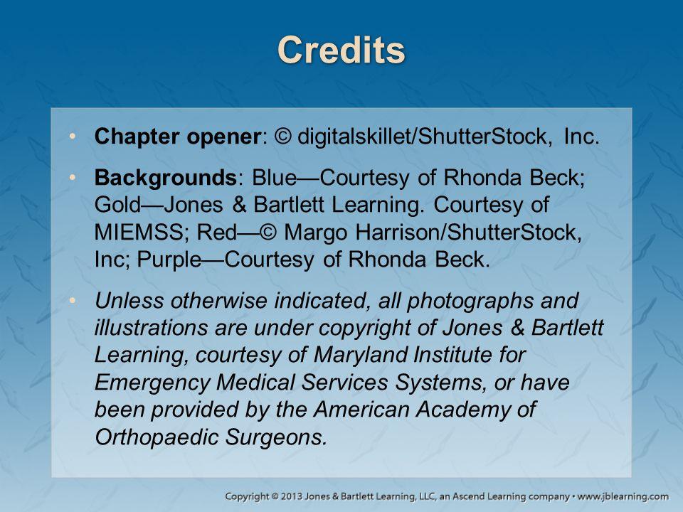 Credits Chapter opener: © digitalskillet/ShutterStock, Inc. Backgrounds: Blue—Courtesy of Rhonda Beck; Gold—Jones & Bartlett Learning. Courtesy of MIE