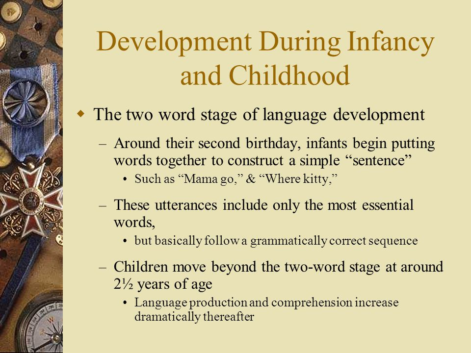 Development During Infancy and Childhood  The two word stage of language development – Around their second birthday, infants begin putting words toge