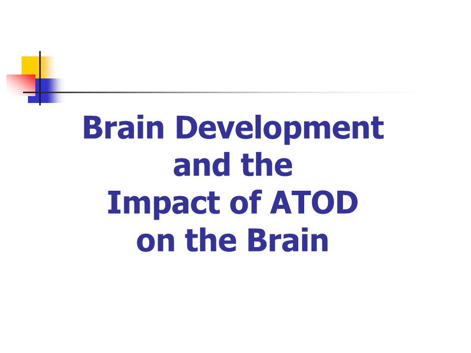 Brain Development and the Impact of ATOD on the Brain
